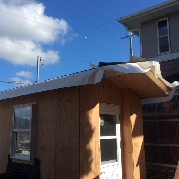 かわいい小屋作り、屋根と建具設置