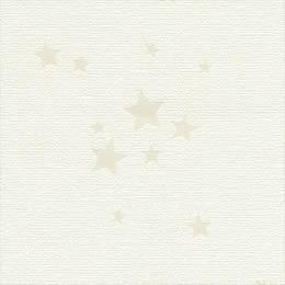さりげない星柄が楽しい壁紙